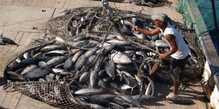 Fishing in Kiribati