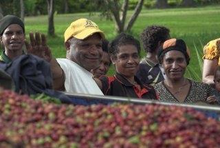 Coffee buyer Remdi Pena with smallholder growers in the Western Highlands.