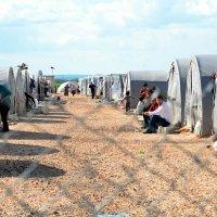 Engaging diasporas in humanitarian response and economic development